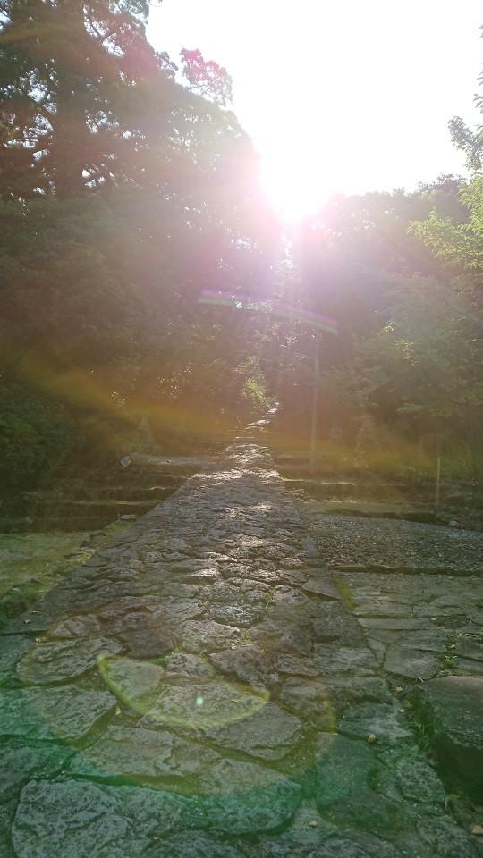 英彦山神宮 参道