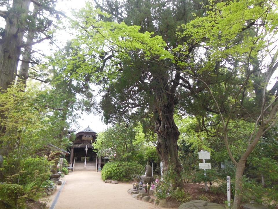 46番札所 医王山 養珠院 浄瑠璃寺