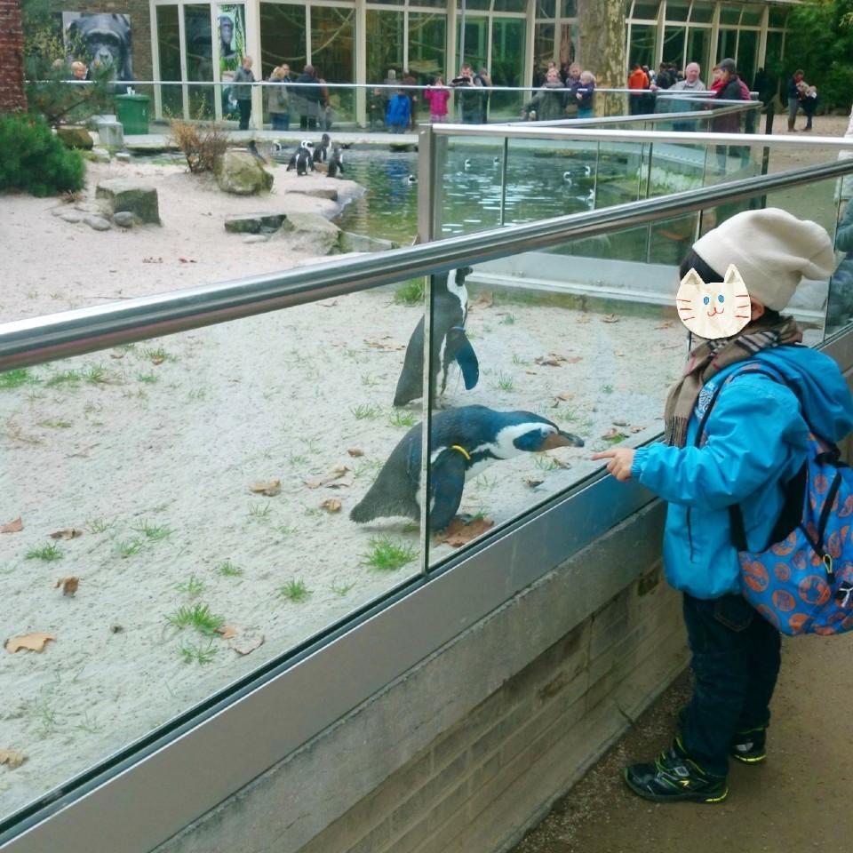 アントワープ動物園