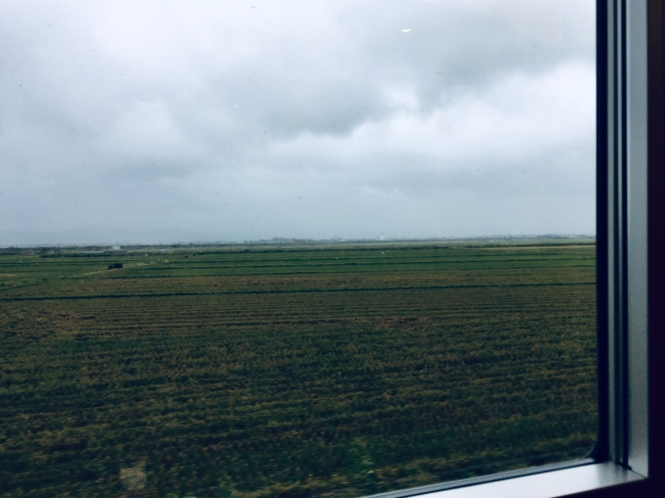 広い広い田んぼと空と