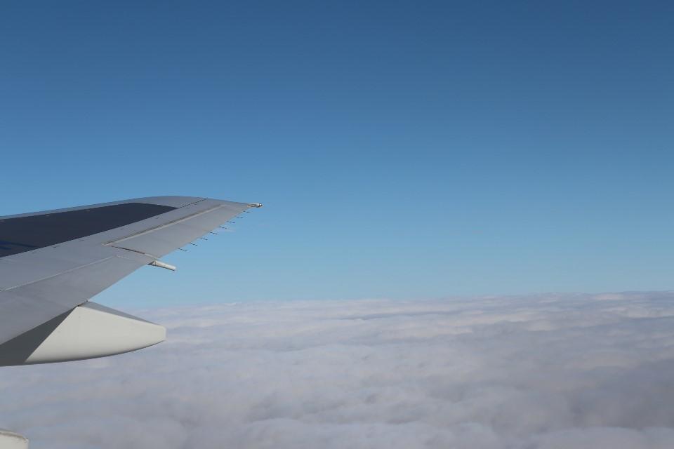 飛行機の上より