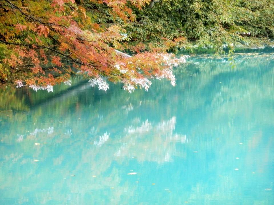 秋の五色沼自然探勝路ウォーキング