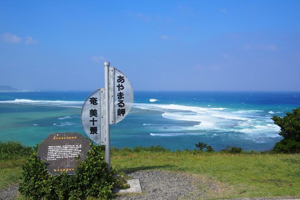 奄美大島リベンジ旅行