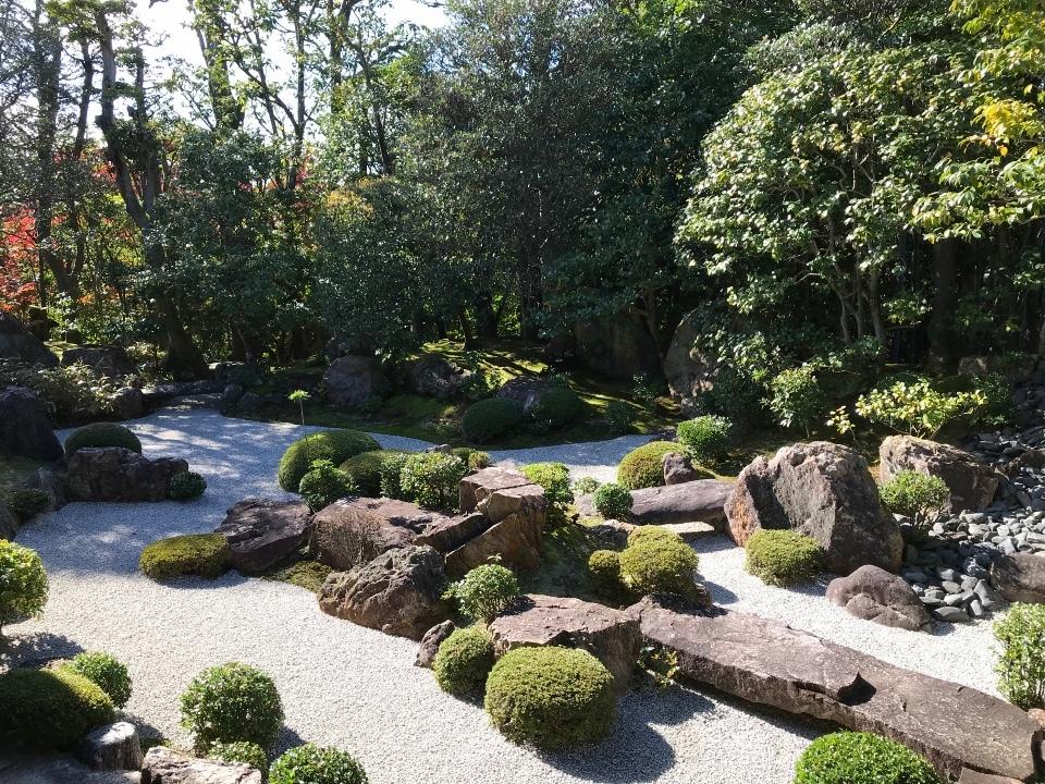 退蔵院 元信の庭