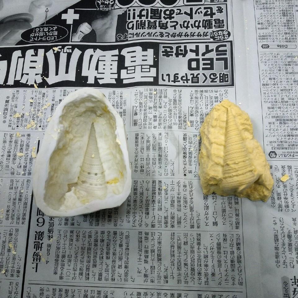 瑞浪市化石博物館の「化石教室一日コース」に参加してみた!