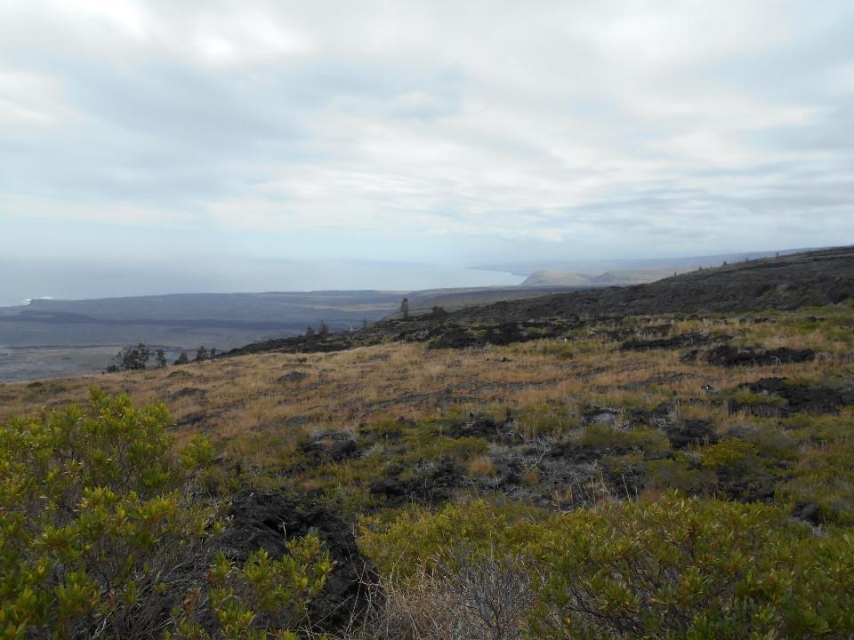火山公園の道路(チェーン・オブ・クレーターズ・ロード)から海を臨む