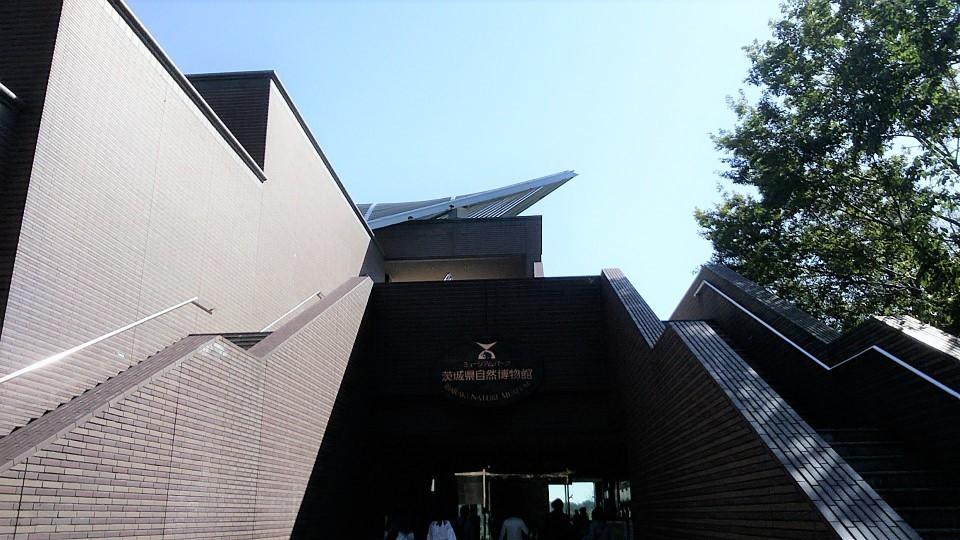 茨城県自然博物館①