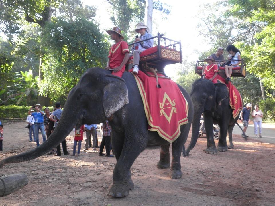 アンコールトム バイヨン寺院手前で象に乗る