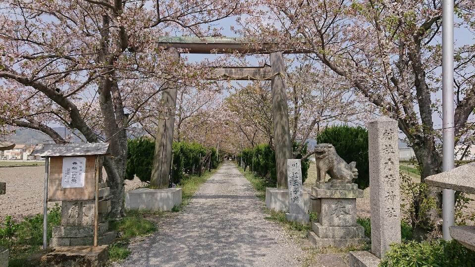 熊野古道を歩く④紀伊路 和泉砂川~布施屋 和歌山県へ