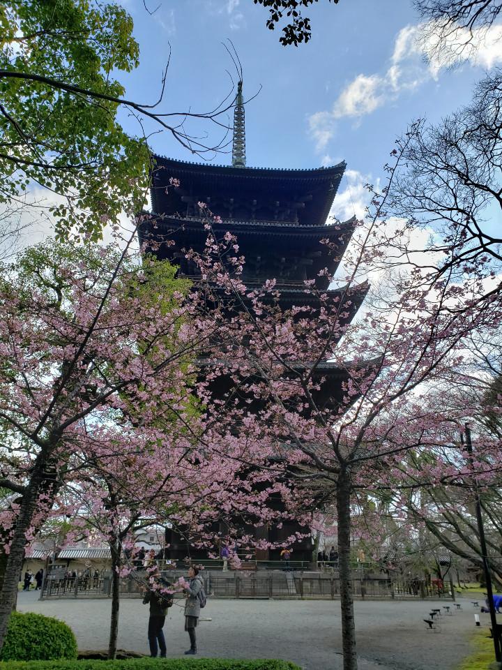 やり残しを回収する京都旅