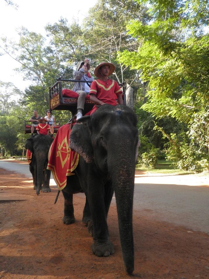カンボジア 体験の旅(その2)