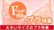 Fカップ以上のブラ特集(通販)