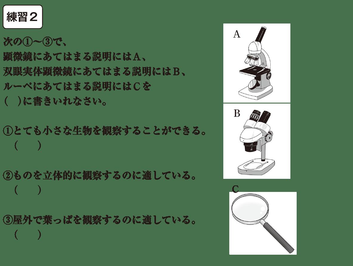 中1 理科1 練習2 カッコ空欄