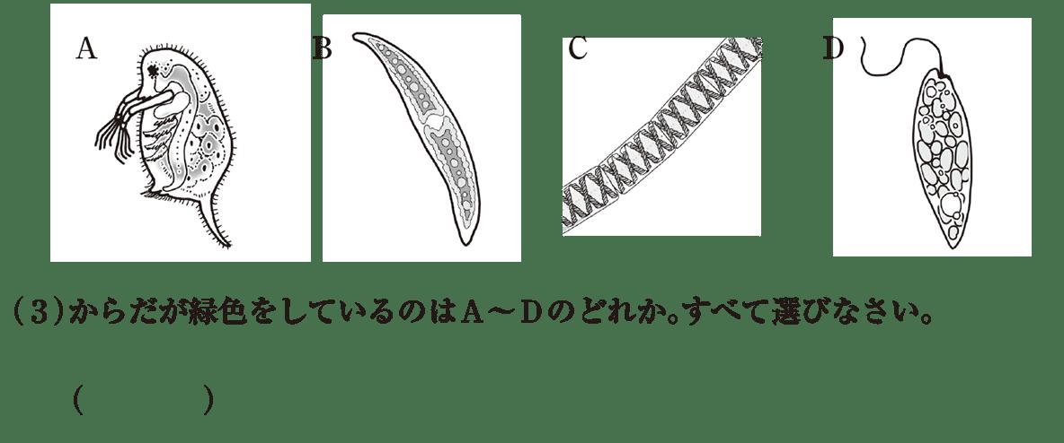 中1理科 生物3 練習2 A~Dと(3)空欄