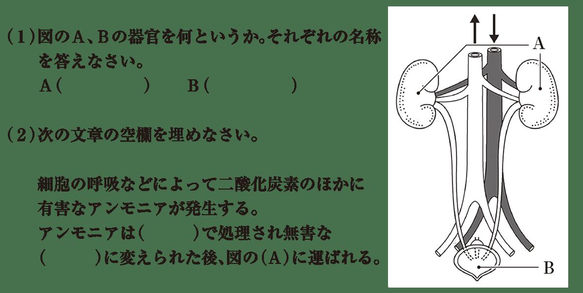 中2 理科生物9 練習1 (1)(2)と右図のみ