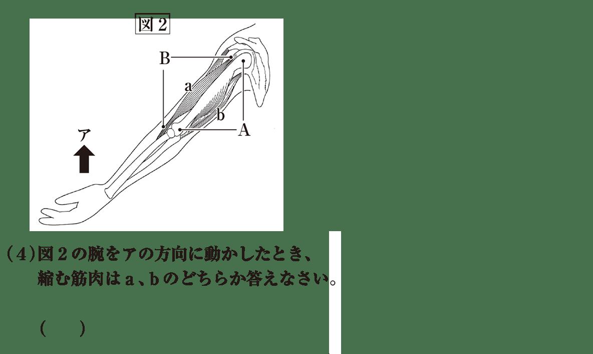 中2 理科生物13 練習 (4)と図2 答えなし