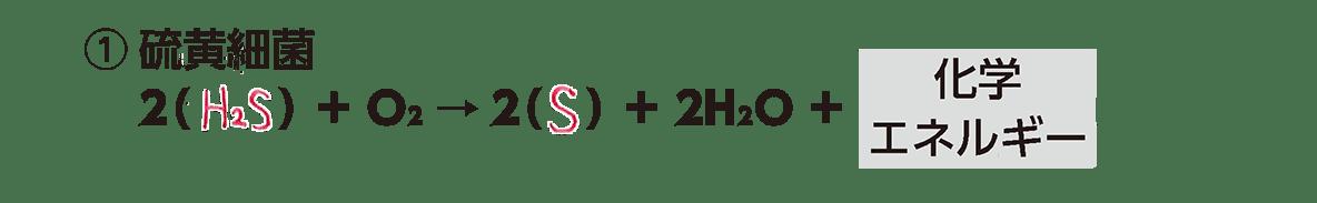 高校 生物 代謝8 ポイント2 ①の化学反応式・すべてうめる・カルビン・ベンソン回路は除く