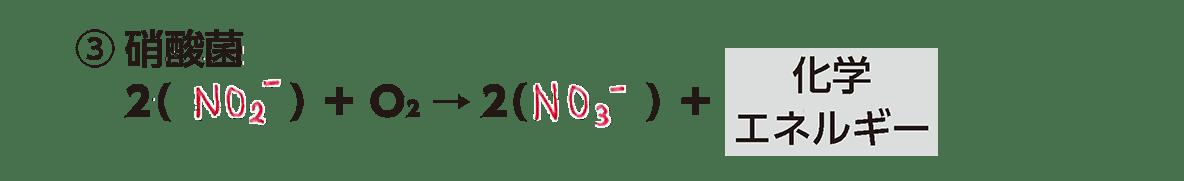 高校 生物 代謝8 ポイント2 ③の化学反応式・すべてうめる・カルビン・ベンソン回路は除く