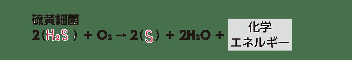 高校 生物 代謝8 ポイント3 硫黄細菌の化学反応式・すべてうめる