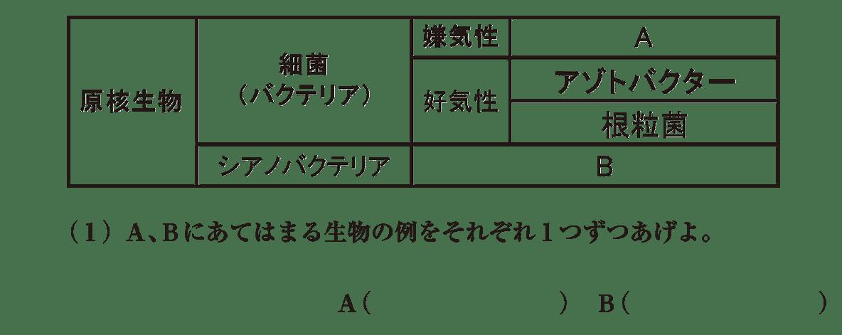 高校 生物 代謝17 演習1 演習1(1)