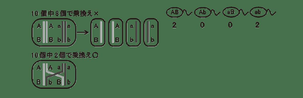 高校 生物 生殖7 ポイント2 左に描かれた2つの細胞、乗換え×の細胞の右に描かれた4つの細胞、4つの配偶子の図と2,0,0,2の数字