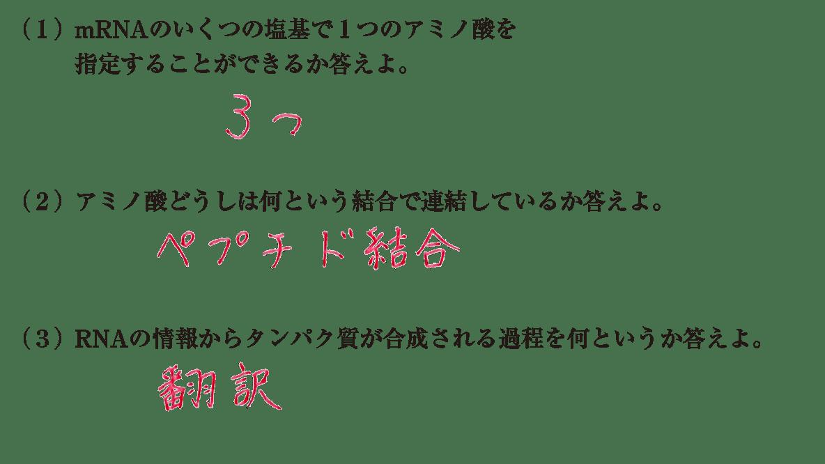 高校 生物基礎 遺伝子8 練習(2)