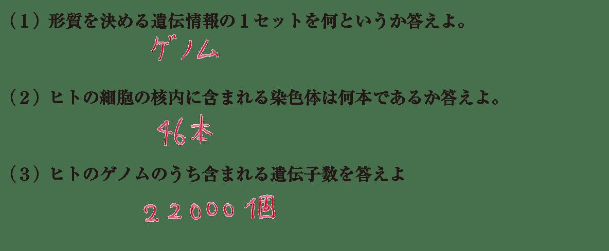 高校 生物基礎 遺伝子23 練習(2)