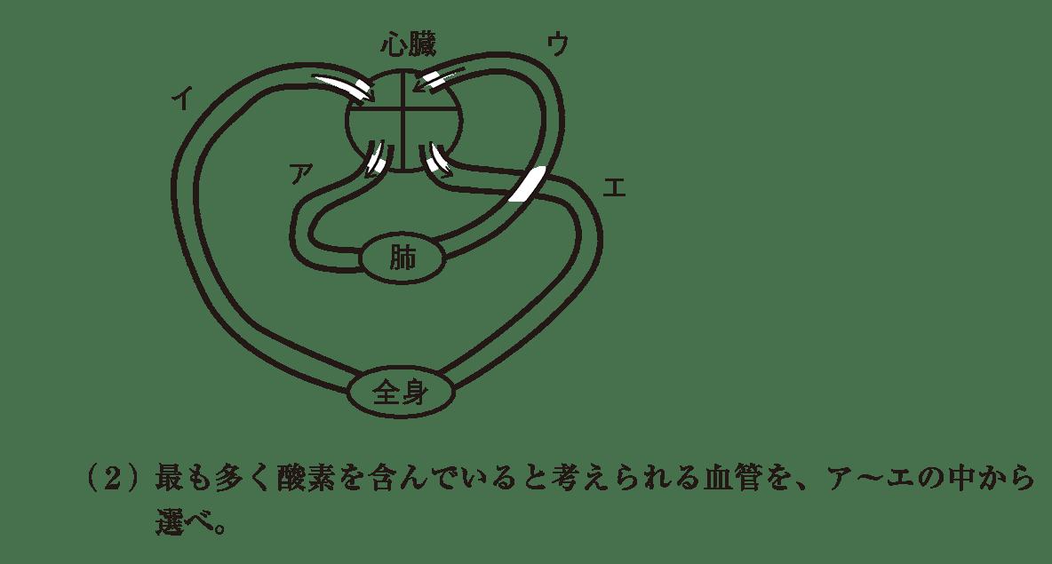 高校 生物基礎 体内環境の維持27 演習1 図と(2)
