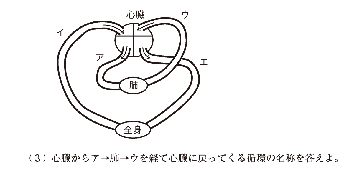 高校 生物基礎 体内環境の維持27 演習1 図と(3)