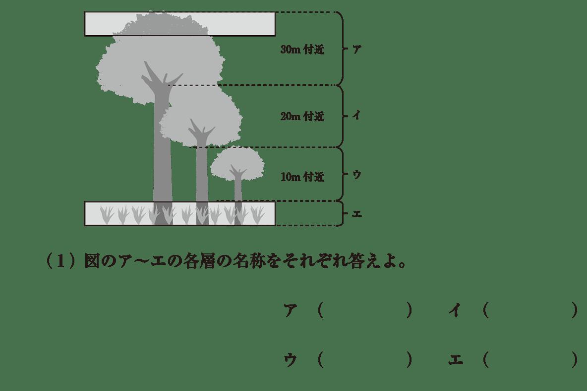 高校 生物基礎 生物の多様性 演習3 (1)と図