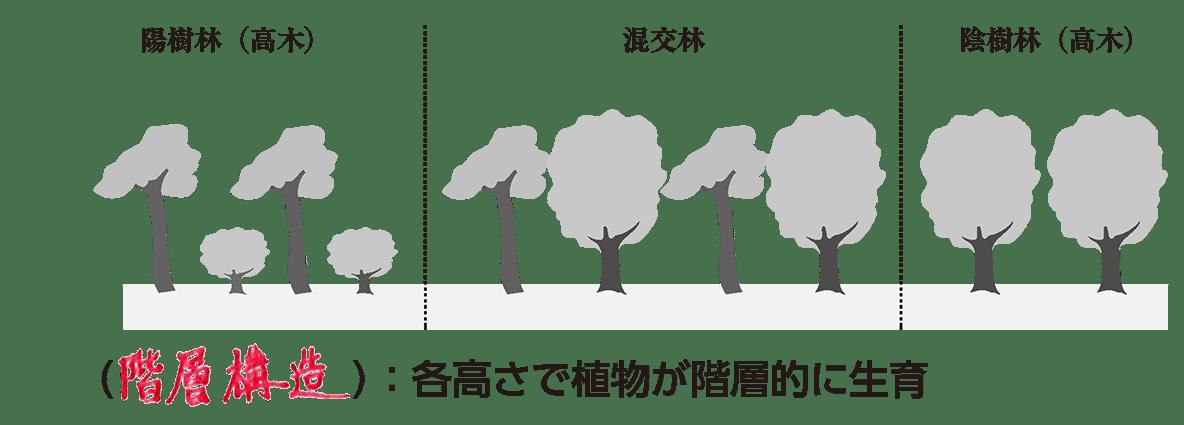 高校 生物基礎 生物の多様性9 ポイント1