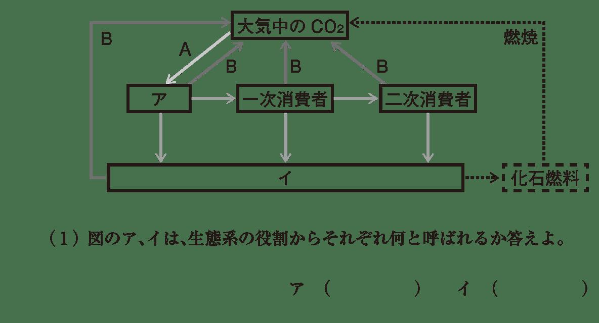 高校 生物基礎 生態系10 演習2 図と(1)