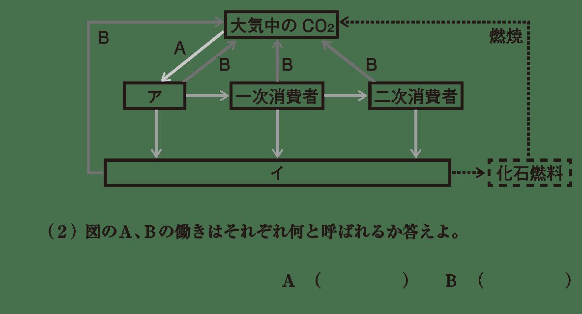 高校 生物基礎 生態系10 演習2 図と(2)