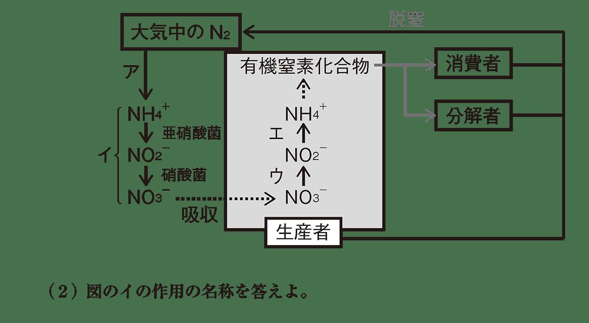 高校 生物基礎 生態系10 演習3 図と(2)