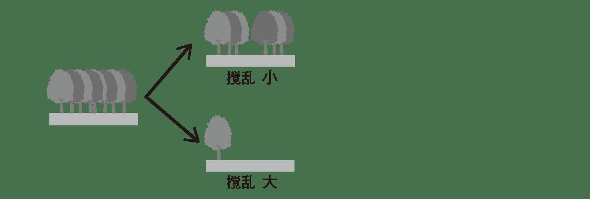 高校 生物基礎 生態系11 ポイント2 ポイント除く 左から2列目まで