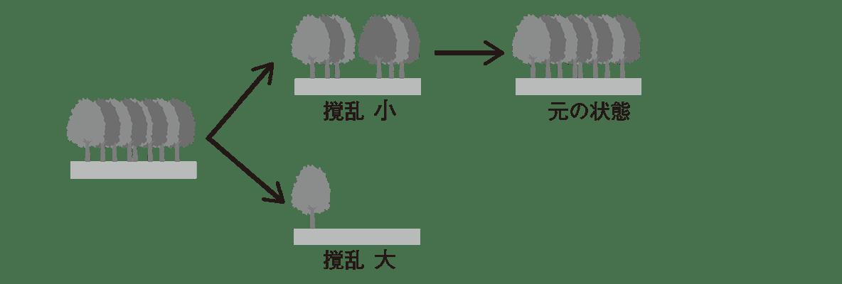 高校 生物基礎 生態系11 ポイント2 ポイント除く 左から2列目まで+3列目の上のみ