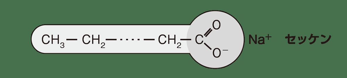 高校 化学 5章 3節 50 1 上の図のみ