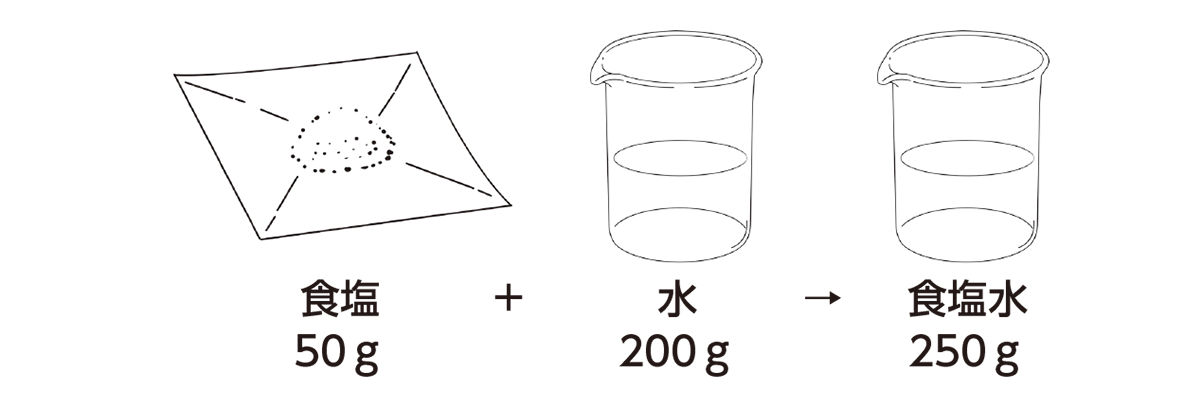 高校 理科 化学基礎 物質の変化10 ポイント1 溶質・溶媒・溶液の行から上 図のみ