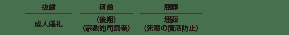 高校日本史5 ポイント3 上の段の抜歯~屈葬の部分まで