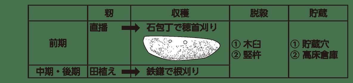 高校日本史7 ポイント2 籾・収穫・脱穀・貯蔵の表