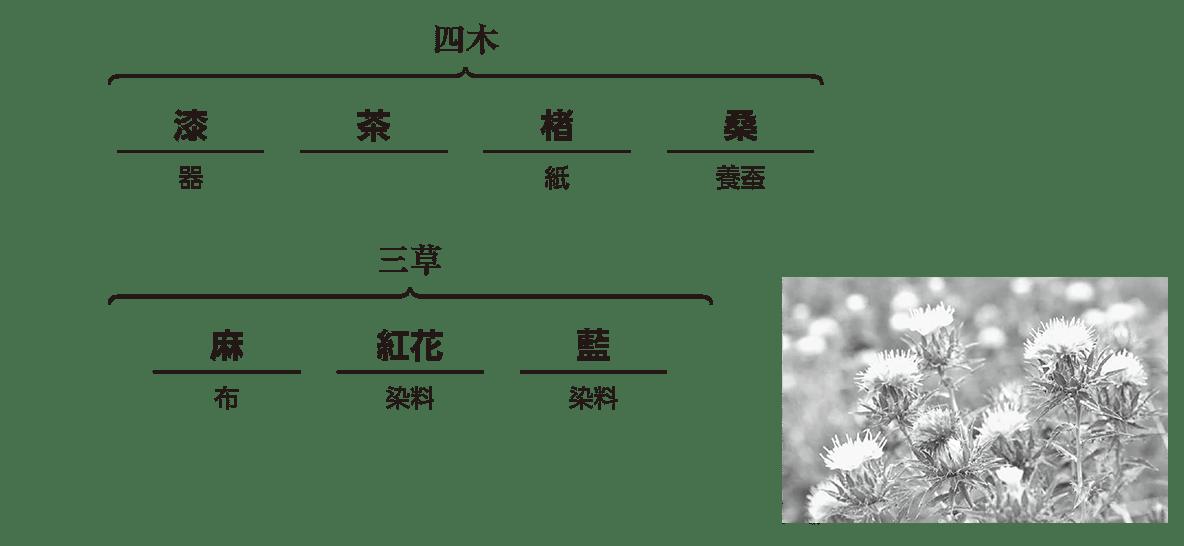 近世26 ポイント2 四木三草の部分(最終行以外)/写真を含む