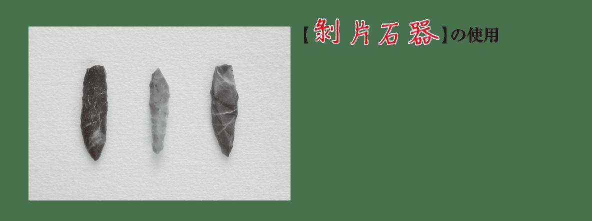 高校世界史 先史時代2 ポイント2下半分のみ/剝片石器の写真と説明/答え入り