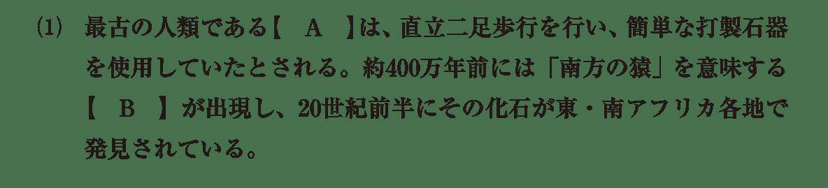 高校世界史 先史時代4 (1)の問題文のみ