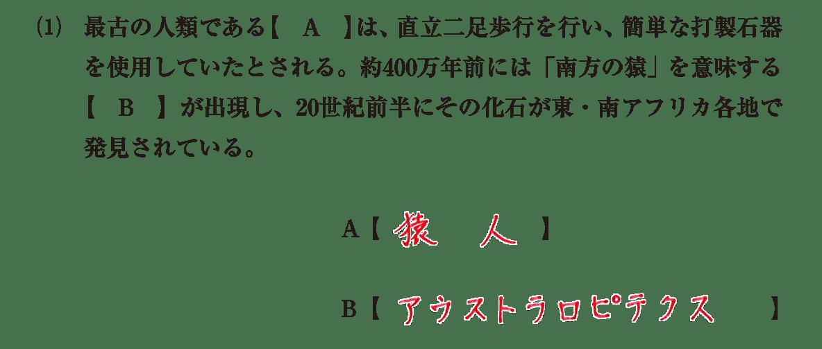 高校世界史 先史時代4 (1)問題文+答え