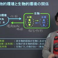生態系と物質循環、エネルギー循環