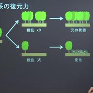 生態系のバランスと保全