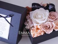 Emma Roseのプランイメージ