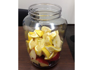 美容、健康、ダイエットに・・・「手作り酵素ジュース教室」