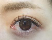 La mer eyelash ラメールアイラッシュのプランイメージ