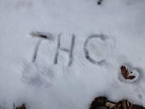 東海ハイキングクラブ(THC)